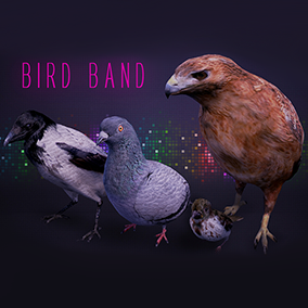 This pack is a set of four birds that are perfect for the environment.