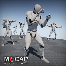 145 Boxing Motion Capture Animations