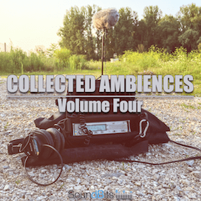 "Each library of the ""Collected Ambiences"" series features 33 various Stereo Ambiances. All recorded with Sound Devices 744T, Beyerdynamic MC930 ORTF, RODE NT1-A, RODE NT4 or Sony PCM-D100. All files were cleaned, edited and most of the files loop smooth."