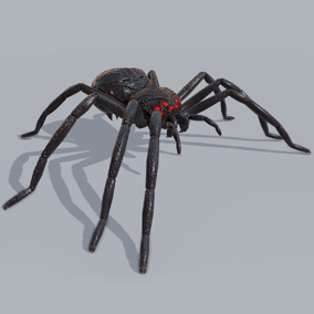 This darkness Spider will use its powerful venom to get rid of any hero character in your fantasy project.