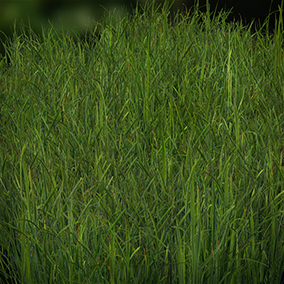 90 high quality and low poly field grass meshes with a pretty good performance in large maps.