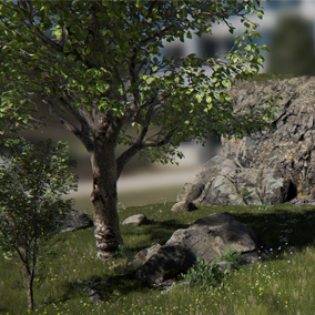 <Emphasis>Licensed for use only with UE4 based products.</Emphasis>  A collection of realistic assets from Epic's Open World demo shown at GDC 2015. Use them to create new levels or add them to existing ones.