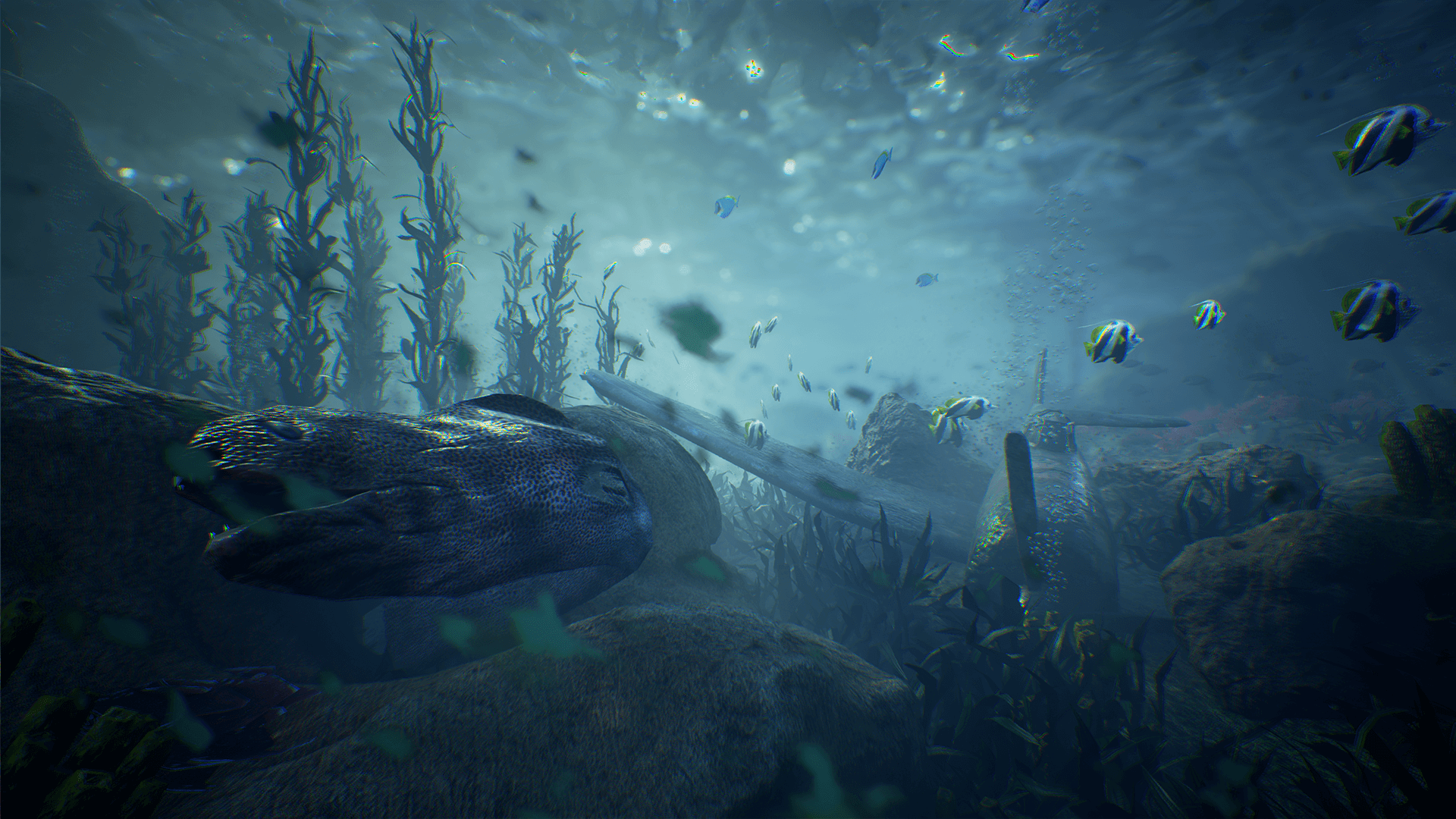 Game engine technology by unreal for What is ocean floor