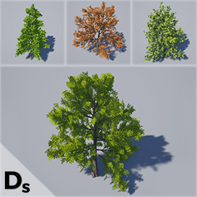 55 High Quality Trees Meshes designed to bring your projects to life!
