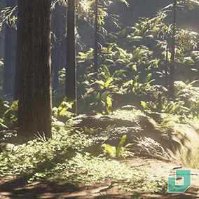 Redwood Forest Assets, Including Ground Plants, Trees and Forest Ground