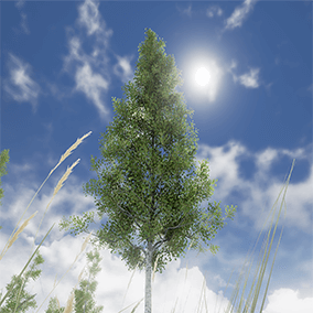 A set of lush deciduous trees to bring life to your scene.