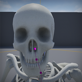 Skeletronix is a plugin for generating skeletal structures for any skeletal mesh. It uses a list of static mesh bones to measure your character and give it a skeleton for use in x-ray effects or zombie versions.