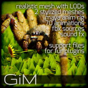 Animals - Spider is a pack of game AI ready animal animations, meshes, sound fx, maya animation rig and support files for fur plugins.