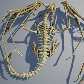 Low polygonal game ready animated model of bones dragon.