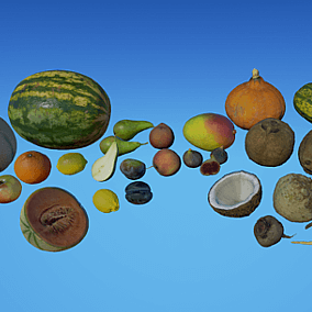 Thirty-three models of fruits and vegetables made using photogrammetry in homemade studio.