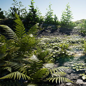 A collection of forest plants from the forest collection mega pack. Large variation of photorealistic plants, already setup for foliage painting. There are small trees, ferns, varios ground plants and bushes.
