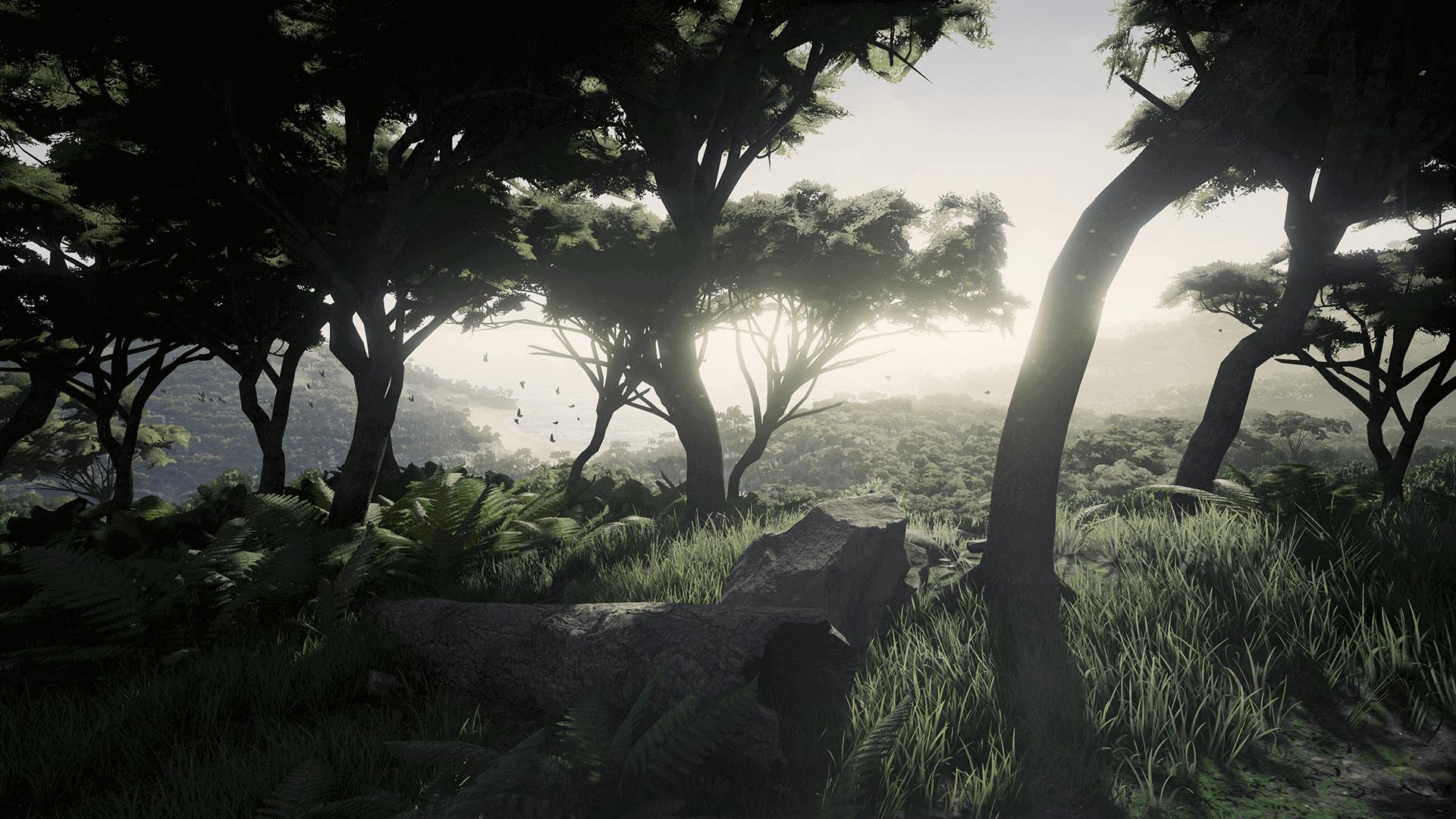 TropicalIsland Screenshot 04 1920x1080 1ca6dba0021985608cf98fde131de246 - Tropical Island Environment - UE4热带岛屿环境资源
