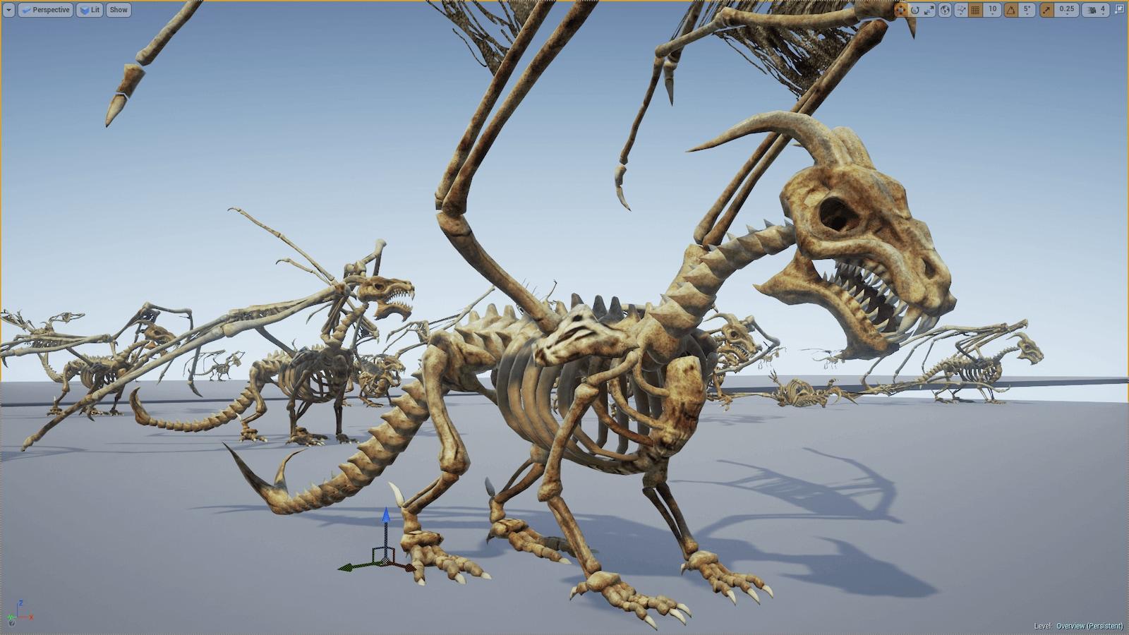 Bones of the Dragon