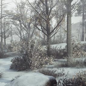 Advanced Winter Landscape