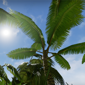 A selection of low poly jungle foliage including trees, bushes and shrubs.