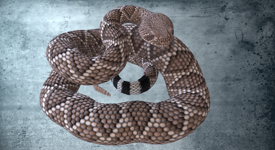 Animated Western Diamondback Rattlesnake by Dibia Digital in