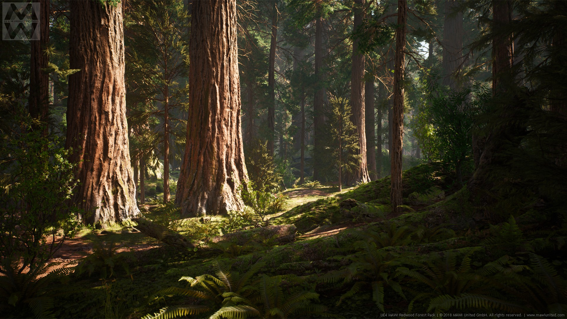 redwood forest collection by mawi united gmbh in environments ue4