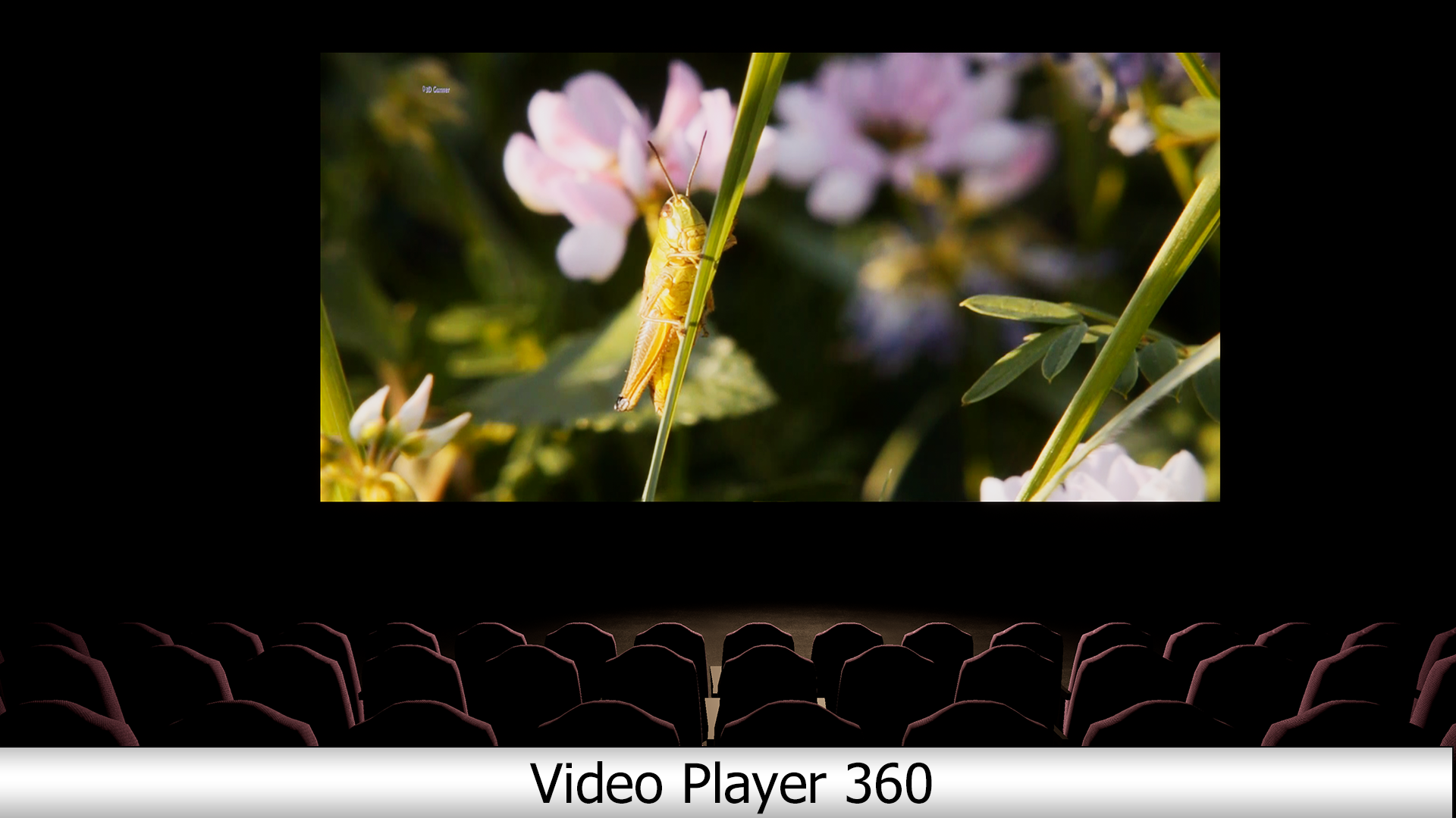 Video Player 360 (2D, 180, 360, Stereo) by ElizzaRF in Code Plugins