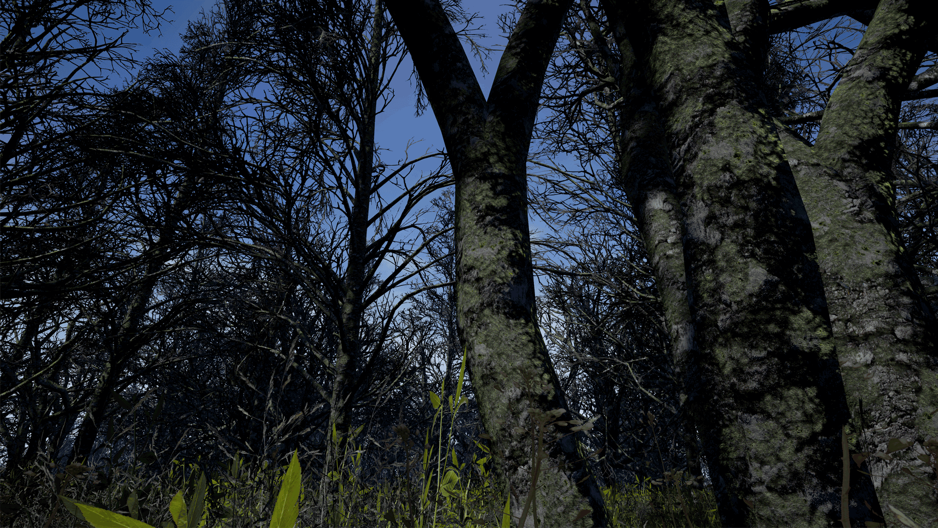 swamp screenshot 02 1920x1080 8325c5bb936d41502eee36aa71c383ed - UE4 Swamp 4.14-4.21 - 树木和灌木丛资源