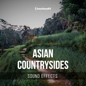110 asian countryside ambiences for your project.