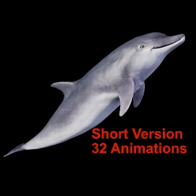 Animal Dolphin (Short Version) with In Place and Root Motion Animations