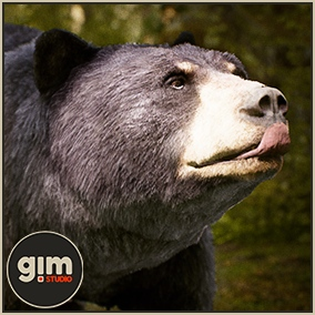 Animated female Black bear with gFur support.