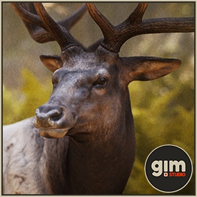 Animated male Elk with gFur support.