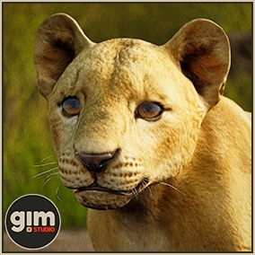 Animated young Lion with bone mesh and gFur support.