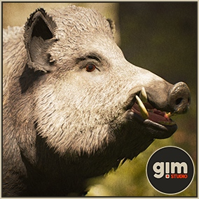 Animated male Wild boar with gFur support.