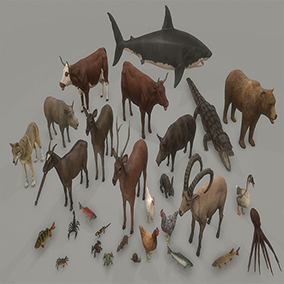 This package contains 32 different animated animals.