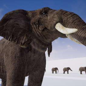 A elephant with realistic skin shader that include a set of 42 animations