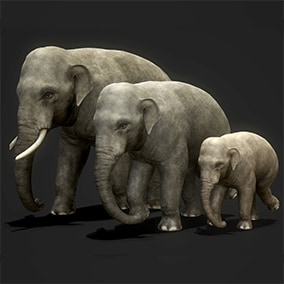 This pack includes 3 elephants ready to populate your savanna or jungle environment.