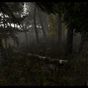 Asset forest