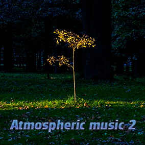 This package contains 8 tracks of background ambient style music.