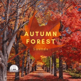 A collection of 35 Autumn Forest themed sounds.