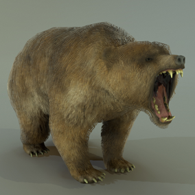 ***Included Inside Forest Animals Pack***This wonderful bear is an ideal animal to populate your 3D environment and create some natural danger in your project.