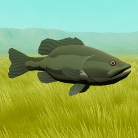 5 Stylized fishes with customizable material, vertex animations, Niagara particle systems, and easy-to-use interactive Blueprints.