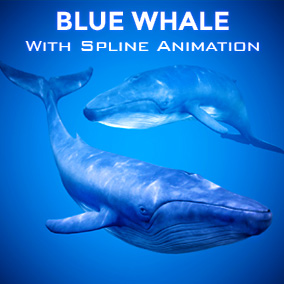 This BlueWhale comes with a procedural animation system that swims along your spline and opens its mouth when nearing the player!
