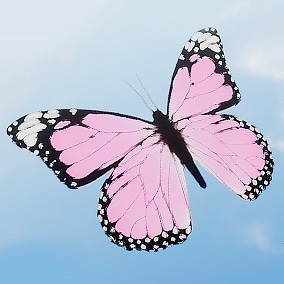 30 butterflies effects with single texture and material!