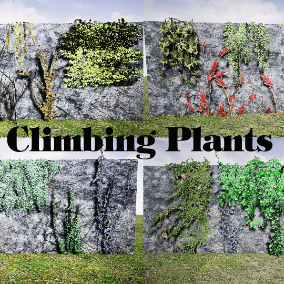 Collection of 79climbing plant models.