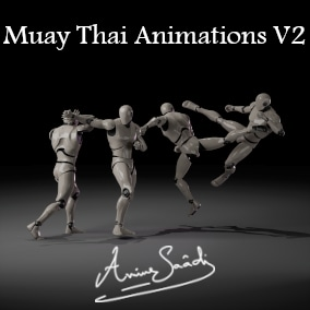 Collection of animations for Kickboxing and Muay Thai part 2