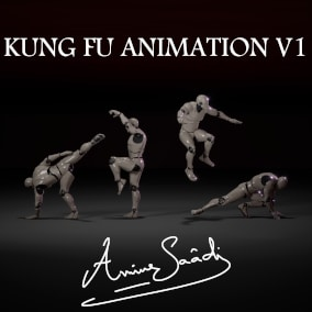 Collection of animations for Kung fu shaolin and wushu