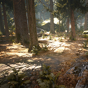 All assets you need to build a photorealistic conifer forest. High resolution models and textures of trees, rocks, debris, plants and more. All materials a highly tweakable and can be customized easily with new textures to fit project specific needs.