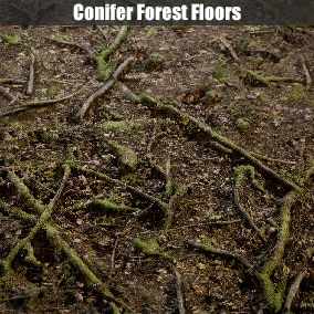 A collection of 17 AAA quality conifer forest floor textures.