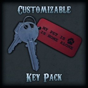 A medium sized pack of keys and key accessories that can be customized into many different combinations.