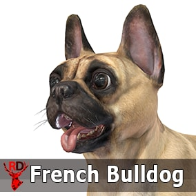 This asset has a realistic FRENCH BULLDOG model with 74 IP/RM animations.