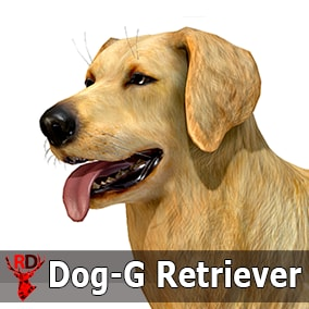 This asset has a realistic GOLDEN RETRIEVER model with 70 IP/RM animations.