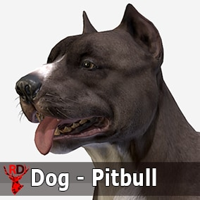This asset has a realistic PITBULL model with 74 IP/RM animations.