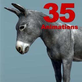 Donkey Skeletal Mesh with 35 animation set