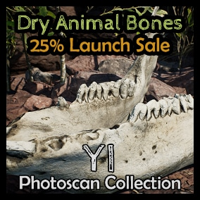 12 Animal Bones and 5 Unique textures taken from Queensland, Australia